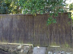 New-Brush-Wood-Fence-Duffys-Forrest-gate