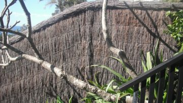 hand-thatched-brushwood-fence