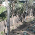 quality-brush-fencing