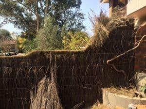 brush-fence-repair-killara-before-repair
