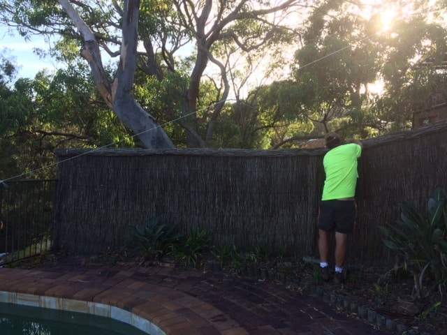 brush-fence-repair-berowra