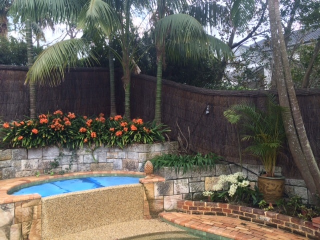 pool-compliant-fence-with-garden-renovation