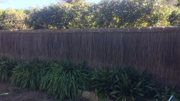 pool-compliant-brush-fence-beecroft