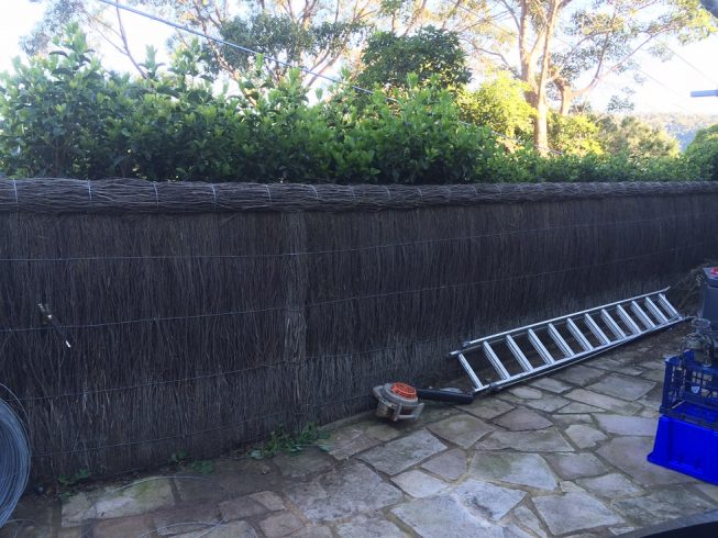 Brush-Wood-Fence-Repair-Newport