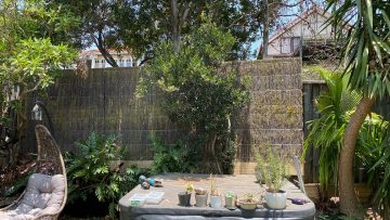 brush-panel-fence-increase-privacy