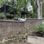 repaired brushfence in turramurra