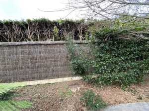 brush-wood-fence-additional-height